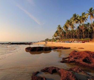 Tourists Who Litter On Beaches And Do Drugs Not Welcome In Goa: Minister of GOA
