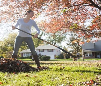 11 Tips for Cleaning Your Yard in Autumn Season