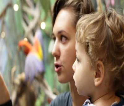 What Is CACHE Diploma in Childcare and Education