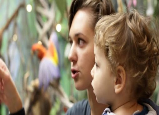 CACHE Diploma in Childcare and Education